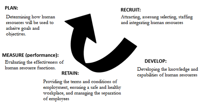 Evaluation of Recruitment, Development and Retention Activities at